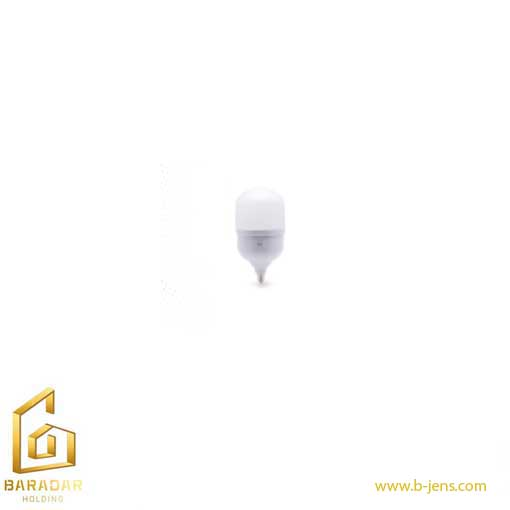 قیمت لامپ حبابی سری جاینت 30وات