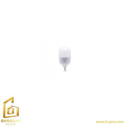 قیمت لامپ حبابی سری جاینت 40وات