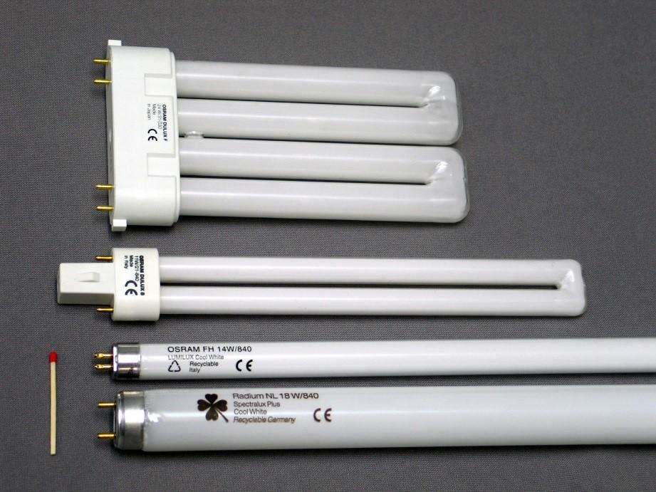 قیمت لامپ فلورسنت